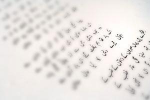 prevodi multilingual